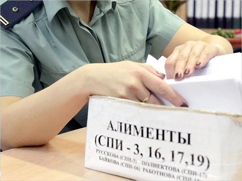 С начала года брянские приставы взыскали с алиментщиков более 130 млн. рублей
