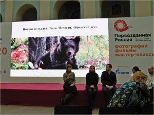 «Брянский лес» представил на «Первозданной России» программу восстановления популяции бурого медведя