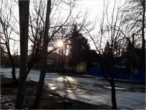 В Брянске побит температурный рекорд самого тёплого января
