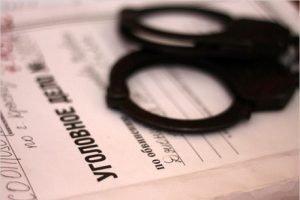 Дальнобойщик-иностранец пойдёт под суд за попытку дать взятку брянскому таможеннику