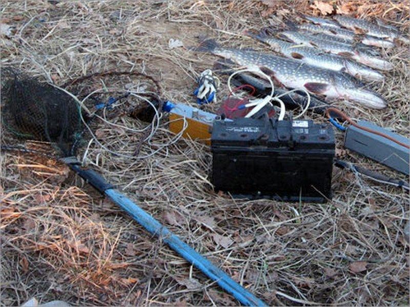 Клинцовский прокурор взялся за электроудочки в интернете