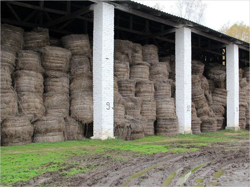 Работникам «Брянского льна» выплачена часть полугодовых долгов по зарплате