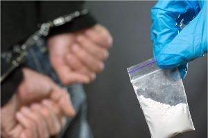 Брянский наркодилер пойдёт под суд за попытку сбыта 26 кг наркотиков