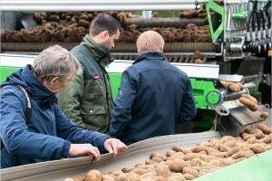 2020 год в Брянской области будет Годом картофеля