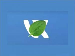 """Соцсеть """"ВКонтакте"""" не работает и беспорядочно удаляет аккаунты"""