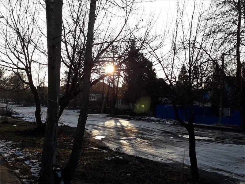 Январь-2020 в Брянске стал рекордно тёплым за всё время метеонаблюдений