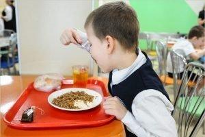 В Брянской области практически всё готово для того, чтобы объявить поручение президента по горячему питанию школьников выполненным