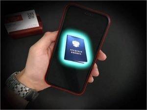 В Брянской области 14 тысяч работодателей завели своим работникам электронные трудовые книжки