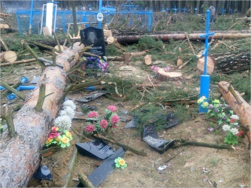 «Всем миром»: на кладбище в Брянской области ради новой часовни осквернили несколько могил