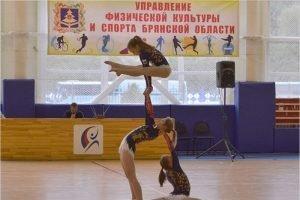 В Брянской области остановлены до особого распоряжения все соревнования