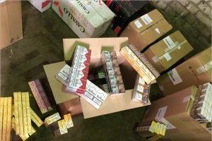 Брянские полицейские изъяли контрафактные сигареты на 119 тысяч рублей