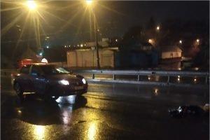 Ночью в Брянске пешеход попал под колёса легковушки