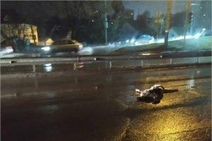 В брянский суд ушло дело таксиста, сбившего пешехода на «Перехватчике»