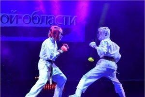 Организаторы отменили традиционный фестиваль боевых искусств в Брянске