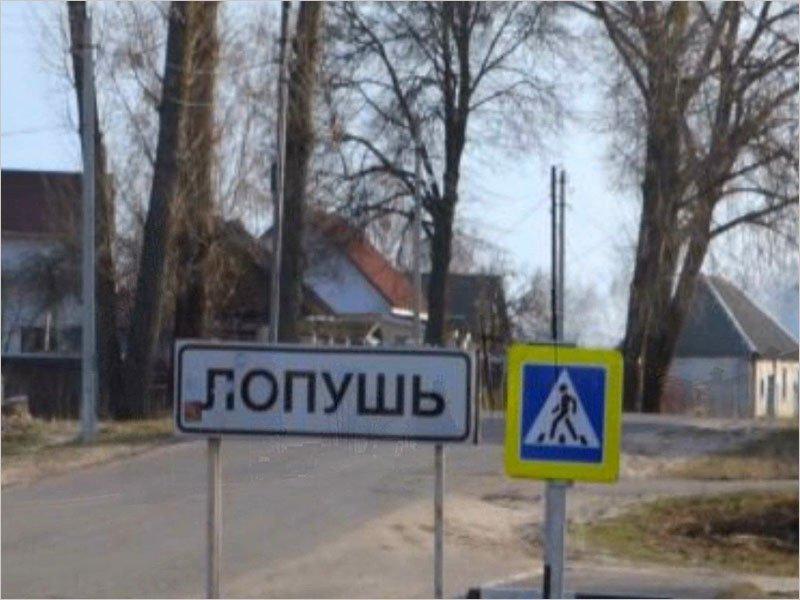 Дорога в выгоничском селе Лопушь стала поводом для судебного иска