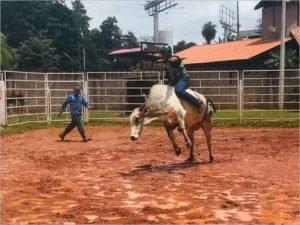 Брянские ковбои побывали в мировом центре мясного скотоводства — Бразилии