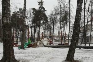 Упавшее дерево повредило верёвочный парк в Брянске