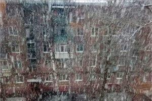 Брянскую область 14 марта накрыл снежный шквал