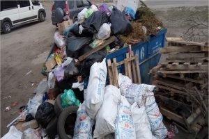 Последний уик-энд перед «коронавирусными выходными» переполнил мусорные контейнеры Брянска