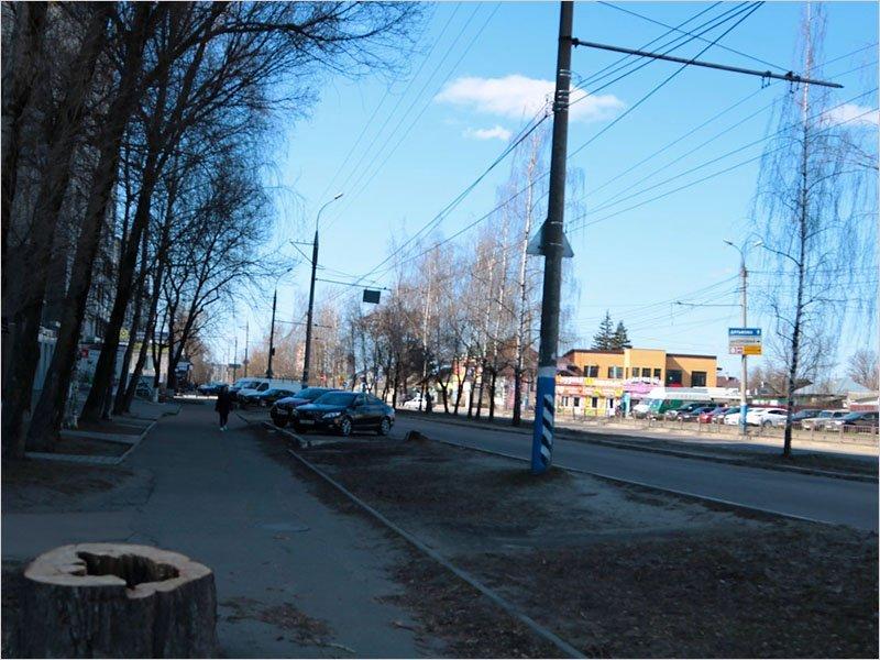 Брянские власти возвращают «в целях безопасности» ликвидированный «в целях обеспечения безопасности движения пешеходов» переход около БУМа