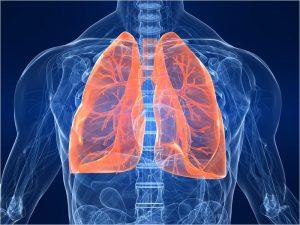 Болезни органов дыхания составили в 2019 году 45% болезней жителей Брянской области — Брянскстат