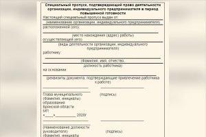 """В Брянской области уже выдано 130 тысяч """"аусвайсов"""" на беспрепятственное передвижение"""