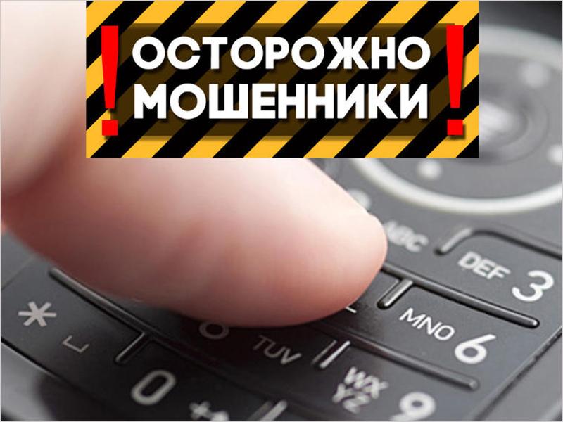 Больше половины брянских мошенников — либо телефонные, либо интернет-мошенники
