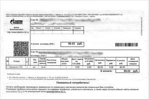 Перерасчёт по платежам за вывоз мусора в Брянске можно сделать по фотографиям