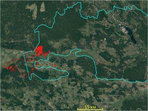 Ожидается перенос дыма от «чернобыльского пожара» на Брянскую область – Greenpeace