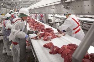 Агрохолдинг «Мираторг» начал поставки своей высококачественной говядины в Китай