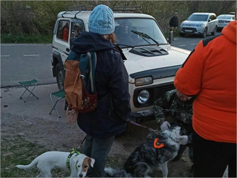 Брянские спасатели-добровольцы выехали в Курскую область на поиски трёхлетнего мальчика