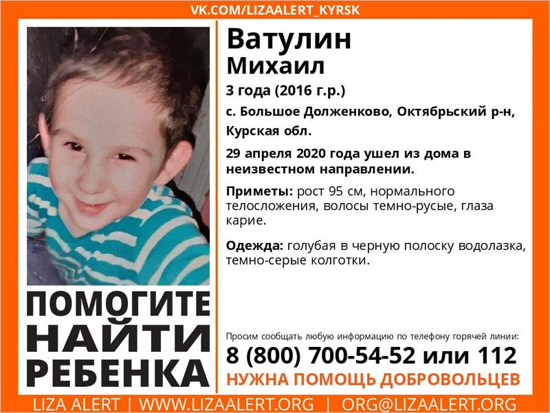 Брянские волонтёры продолжают поиск пропавшего трёхлетнего мальчика