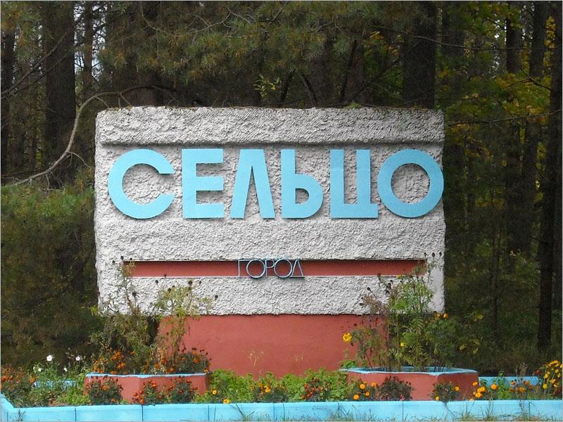 В Брянске подумают о снятии «коронавирусных» ограничений с Сельцо