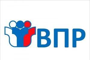 Всероссийские проверочные работы перенесены на следующий учебный год – Минпросвещения