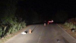 В Погаре легковая иномарка раздавила женщину-пешехода