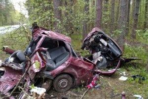 ДТП с тремя жертвами на брянской дороге: подробности