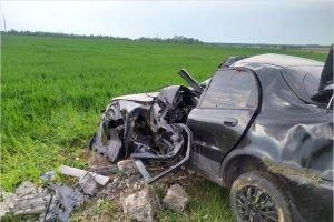 Под Новозыбковом на гомельской трассе произошло смертельное ДТП