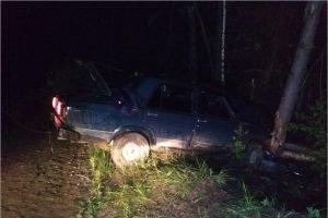Пьяный водитель в Погарском районе заехал в дерево. Он и пассажир отделались разбитыми головами