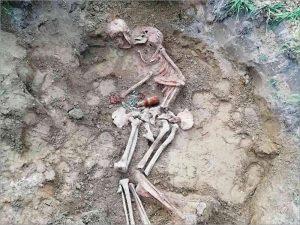 В суражском селе Овчинец обнаружены останки солдат Красной Армии, освобождавших село