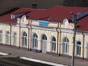 До конца мая не будут ходить пригородные поезда на участке Новозыбков-Туросна