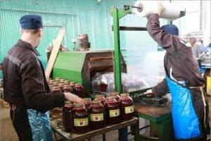 Заключённые суражской колонии КП-3 наконсервировали овощей на 16,5 млн. рублей