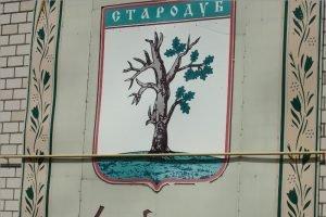 Облдума назначила дату объединения Стародуба с районом в муниципальный округ