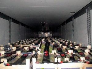Брянские таможенники перехватили 260 тонн санкционных фруктов