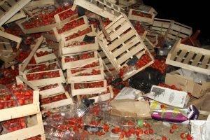 В Брянской области уничтожено более 35 тонн сомнительных «белорусских» клубники и яблок