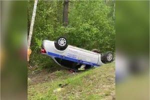 Дорожные полицейские в Брянской области улетели в кювет от косули