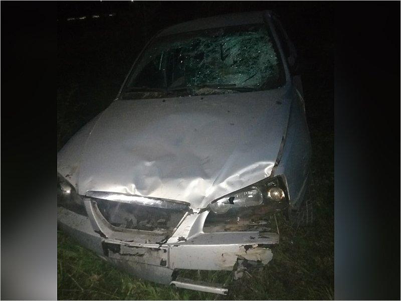 Пьяное ДТП под Брянском: водитель «наефремился»