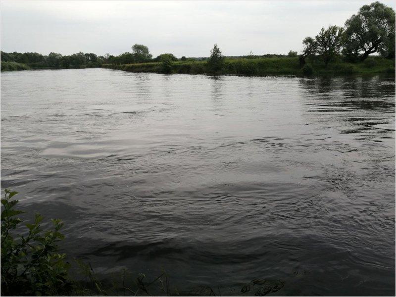 На Десне отмечается абсолютный рекорд летнего подъёма воды за 13 лет