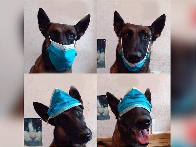 Шесть основных способов ношения маски в условиях сохранения масочного режима при 30ºC и выше