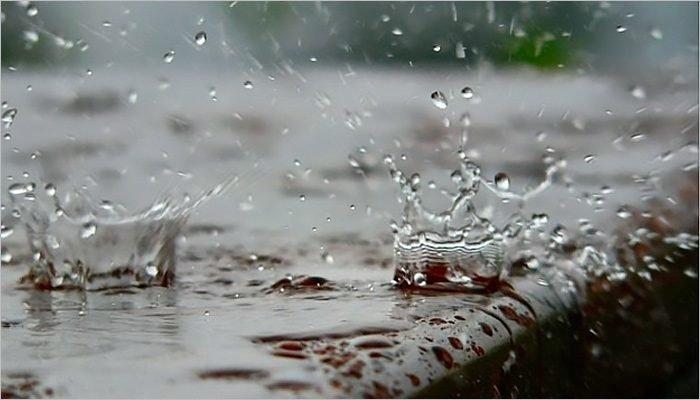 Прогноз на 29 июня: сильные дожди ожидаются в течение всего дня, возможны грозы
