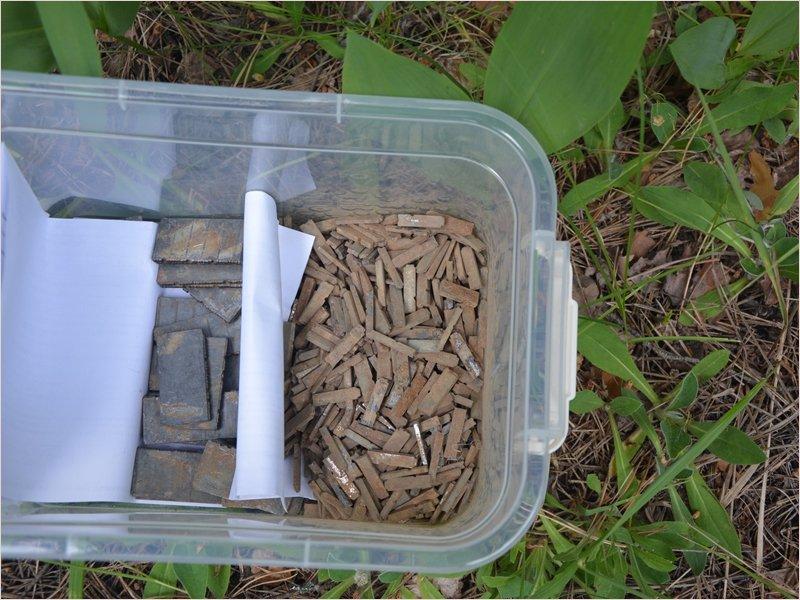 Брянские поисковики нашли в лесу набор фронтовой газеты «На разгром врага»